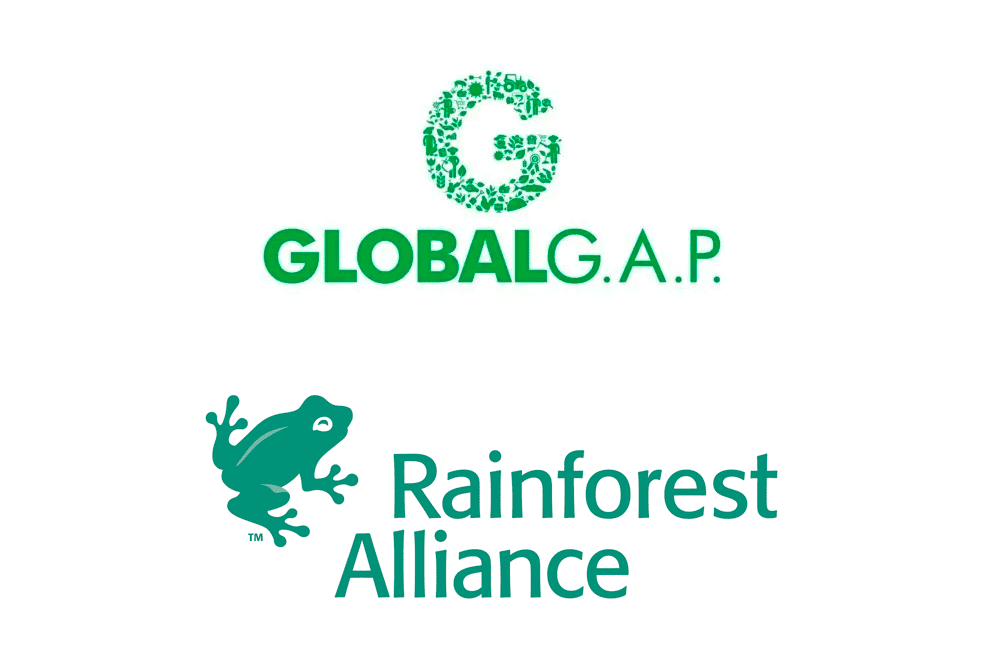 GlobalG.A.P. e Rainforest Alliance