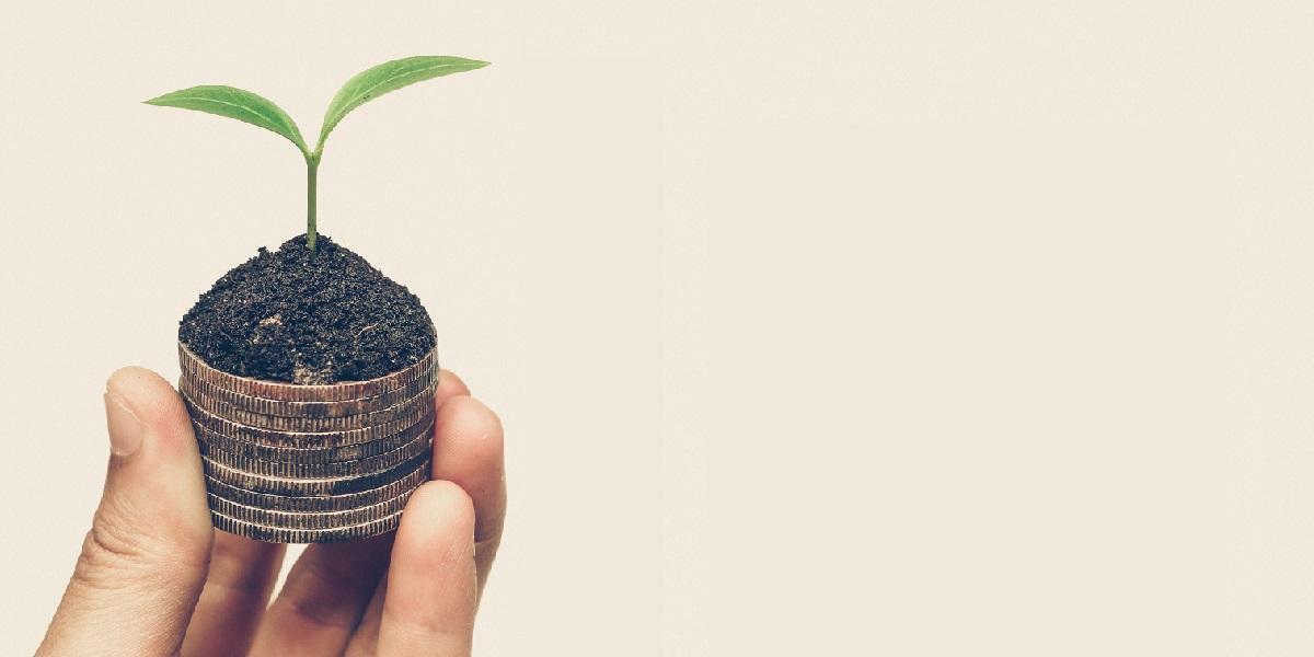 CSR: Mercado Orgânico